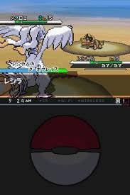 Pokemon Black DSi